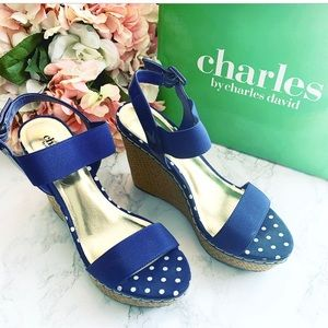 🌸 Charles by Charles David Tapia Wedge Sandals 8